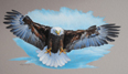 Bald Eagle in Clouds